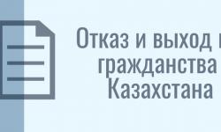 Куда отправлять заявление об отказе от гражданства украины